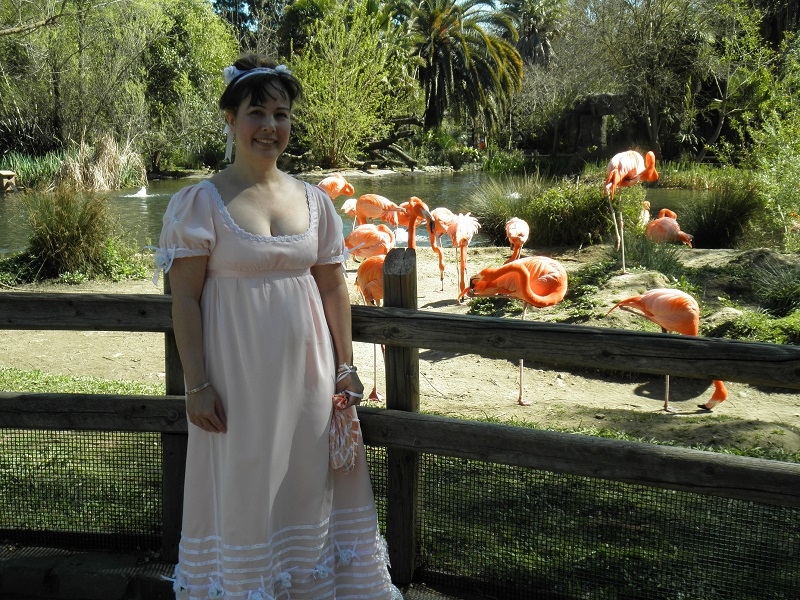 Reproduction Regency Peach with White Sheer Ball Gown. At the Sacramento Zoo with flamingoes.  April 2011